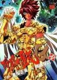 岡田芽武・車田正美の、漫画、聖闘士星矢エピソードGの最終巻です。