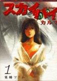 スカイハイカルマ、コミック1巻です。漫画の作者は、高橋ツトムです。