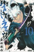 金田達也の、漫画、サムライラガッツィの最終巻です。