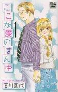 ここが愛のまん中、漫画本の1巻です。漫画家は、宮川匡代です。